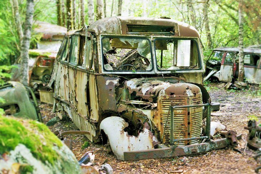 مقبرة سيارات في غابة في السويد
