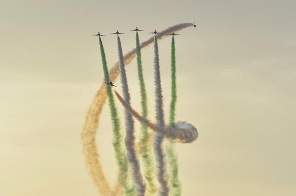 الصقور السعودية تستعرض في مهرجان الورود والفاكهة في تبوك