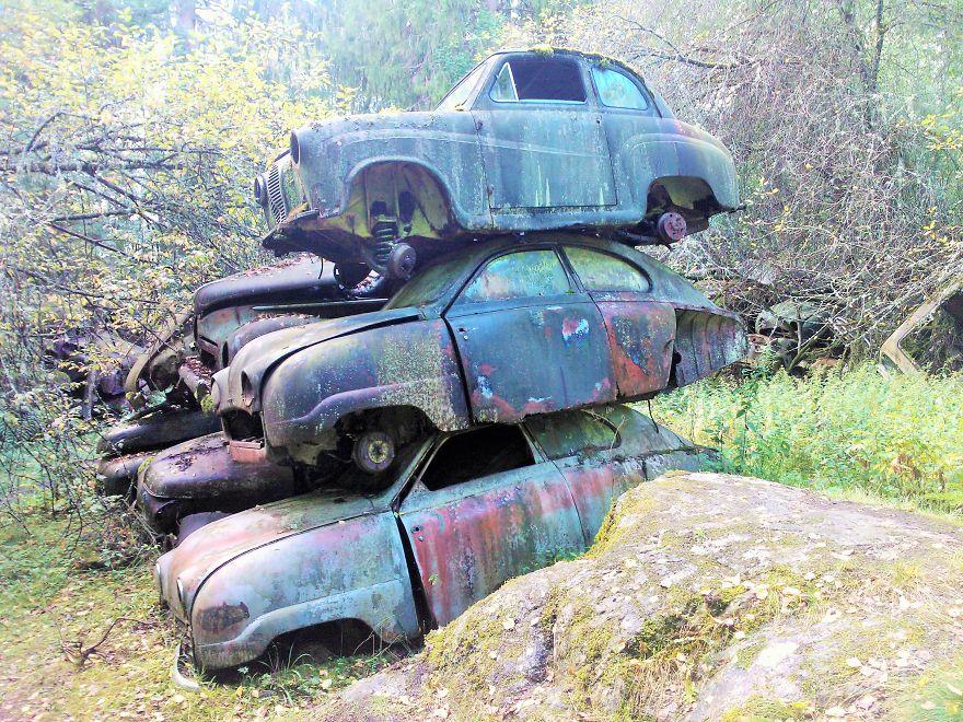 مقبرة سيارات محطمة في غابة في السويد