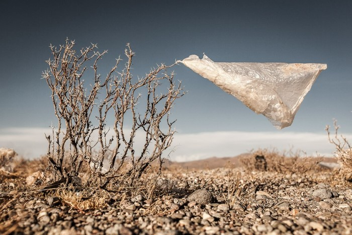 كيس بلاستيكي على هضبة ألتيبلانو في بوليفيا.