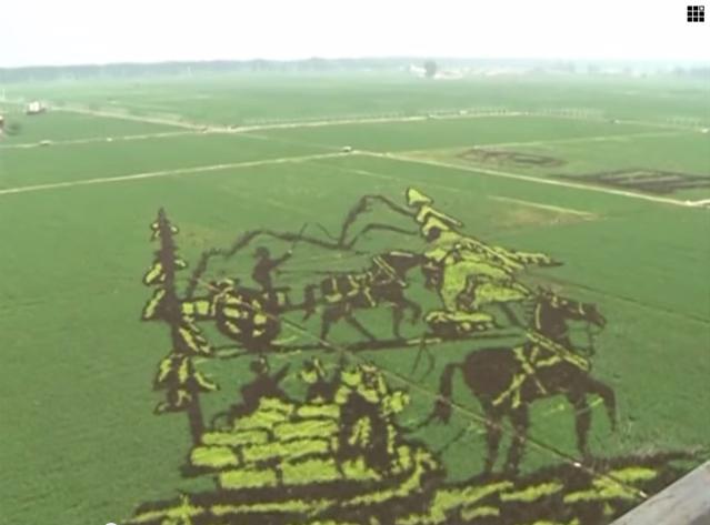 أظهرت مجموعة من الصور لـ حقول الأرز المذهلة، التي عرضت أشكال وفنون ثلاثية الأبعاد فائقة الدقة، وتقع هذه الحقول في مدينة شنيانغ، في مقاطعة لياونينغ شمال شرق الصين. كان هذا العمل من قِبل المزارعين الصينيين في هذه الحقول، وكانت هذه الحقول تتميز بأنماط وألوان وأشكال مختلفة، لتكون لوحة فنية، يتم مشاهدتها من أعلى بوضوح أكبر.