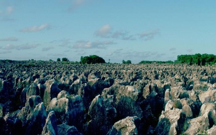 استخراج الفوسفات من ناورو