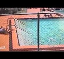 مسبح مكهرب