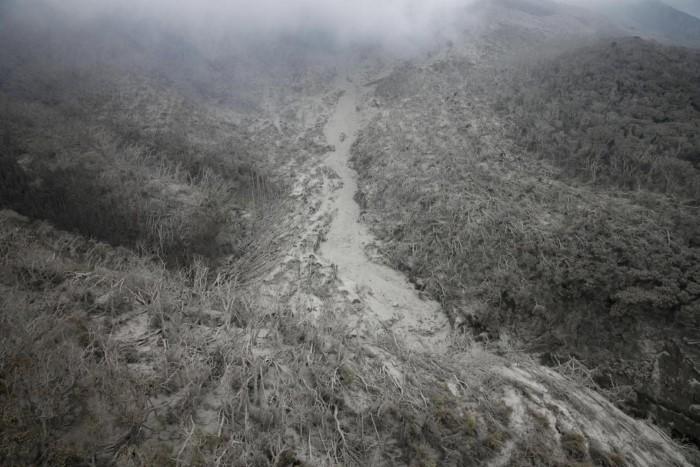 الحمم البركانية تحرق الأشجار