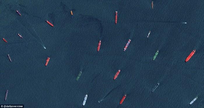 سفن الشحن في ميناء سنغافورة