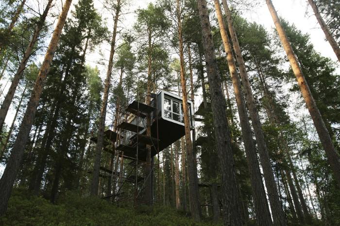 المنزل المعلق على الأشجار