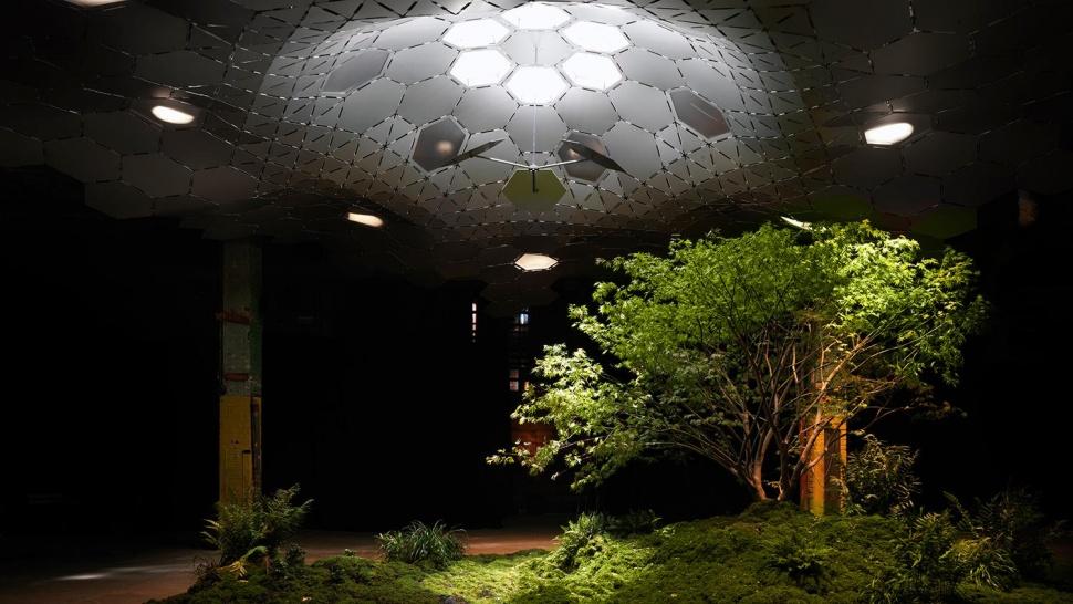 حديقة لولاين تحت نيويورك