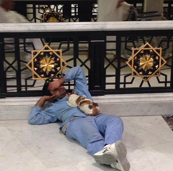 عامل نظافة في المسجد الحرام أخذ غفوة فنام قط على صدره