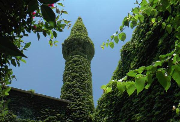 صورة للجامع الأخضر والذي يقع بولاية أضنة، تركيا