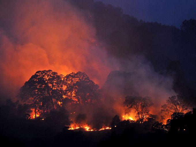 انتشار واسع للنيران المشتعلة في غابات كاليفورنيا