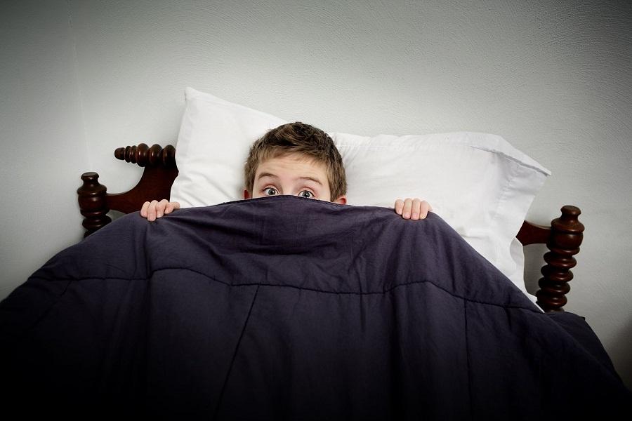 الأوهام المرعبة خلال النوم