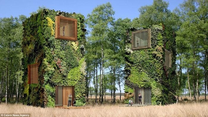 مهندس معماري يخطط لبناء مدينة سكنية كاملة وسط الطبيعة