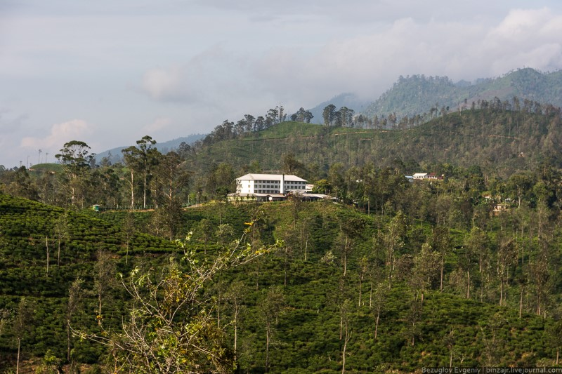 جمال الطبيعة في سريلانكا