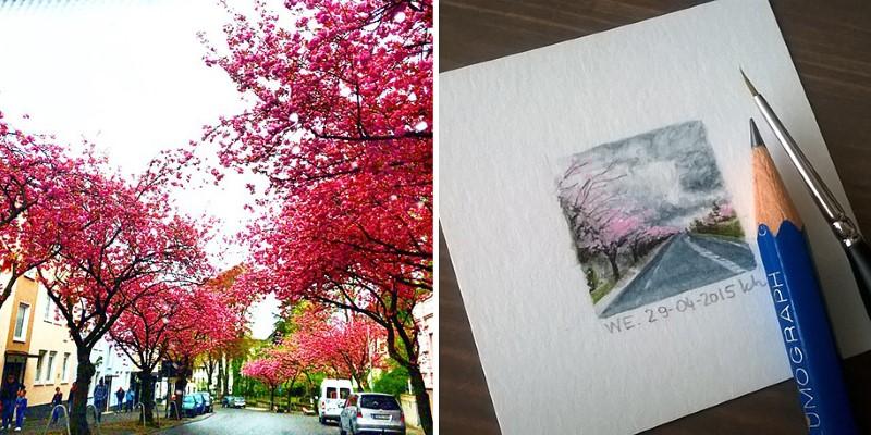 رسم أشجار جميلة