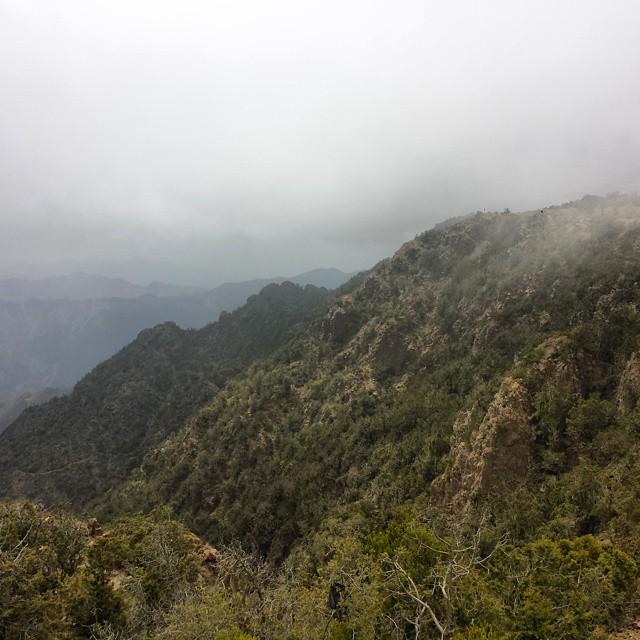 جبال شاهقة في أبها