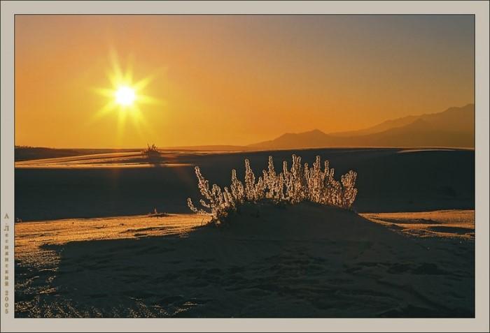 صحراء وسط الجليد في سيبيريا