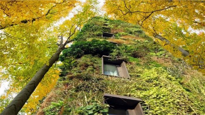 مباني وسط الطبيعة