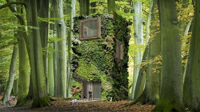 منازل الطبيعة