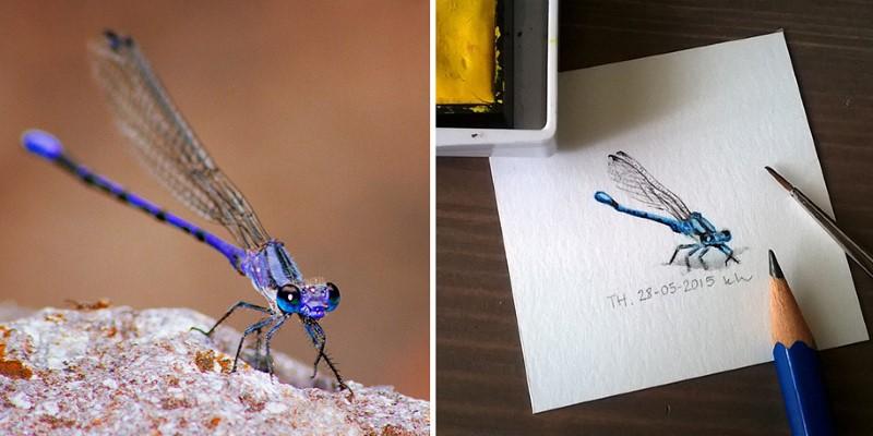 رسم حشرات