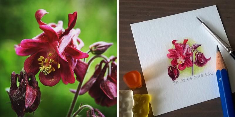 رسم أزهار