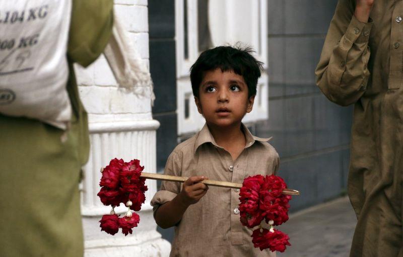 الحياة في باكستان 3008152