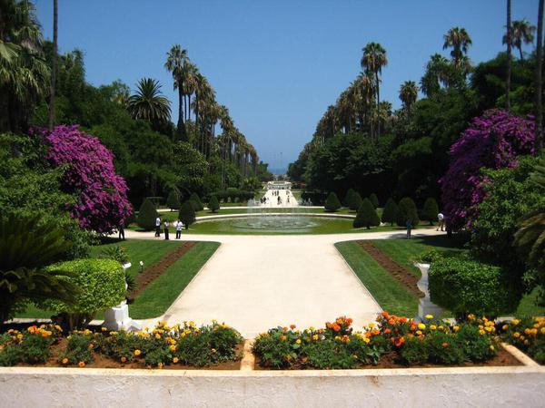 صور منوعة حديقة الحامة في العاصمة الجزائر