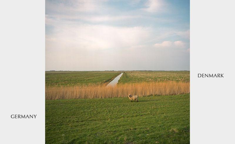 حدود ألمانيا الدنمارك