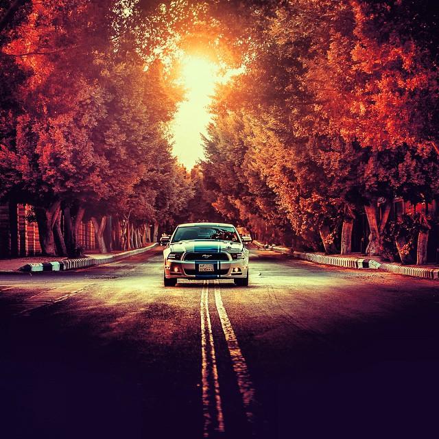 تصوير سيارة فاخرة