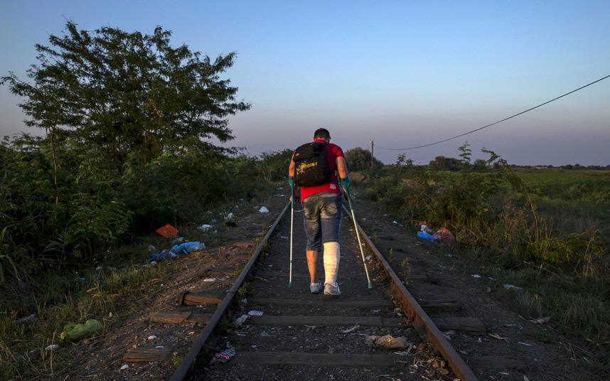 مهاجر إلى المجر