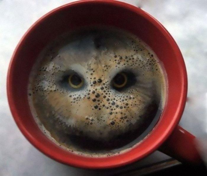 كوب قهوة غريب