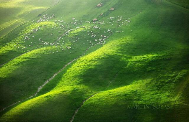 الحقول الخضراء بإيطاليا