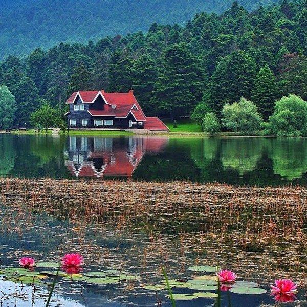 بحيرة كولجك