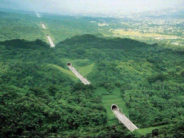 طريق في تايوان