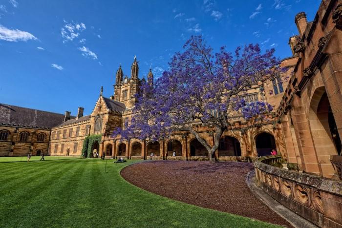 جامعات جميلة في أستراليا
