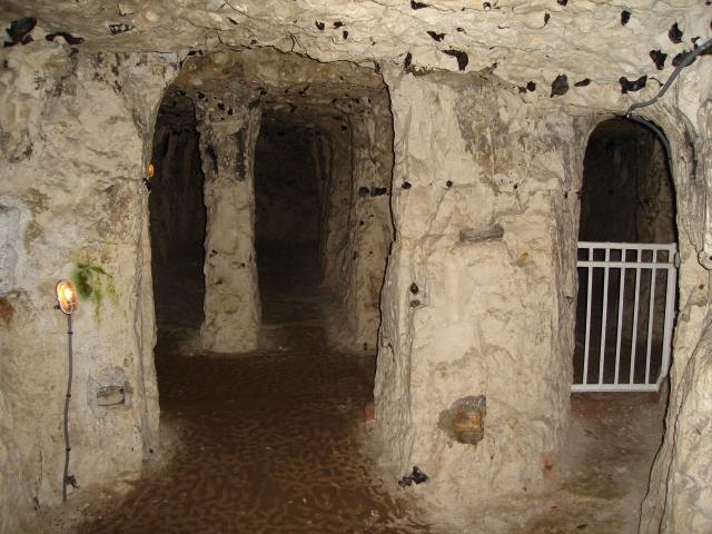 ناور مدن تعيش تحت الأرض