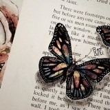 Drawing Butterflies