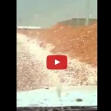 فيديو تساقط برد