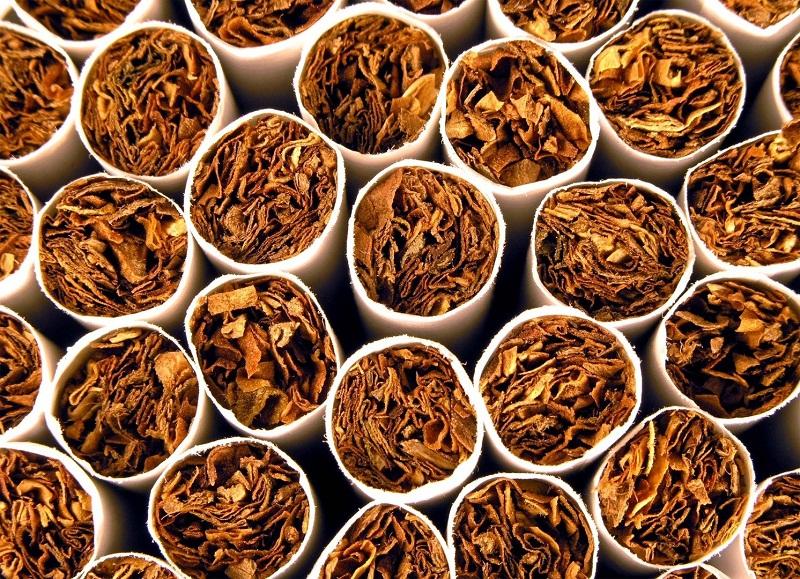 رائحة التبغ
