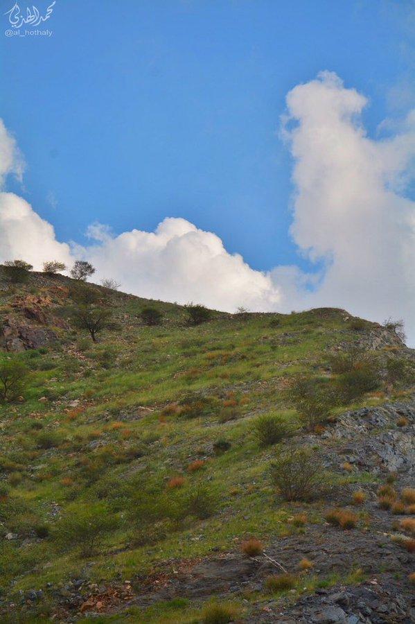 ربيع جبل كرا