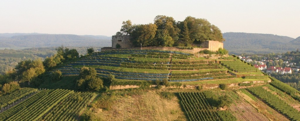 قلعة فاينزبرج