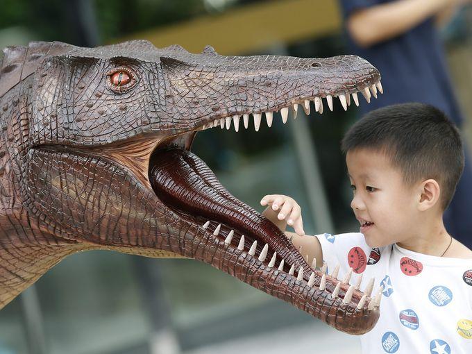 معرض الديناصورات الآسيوي