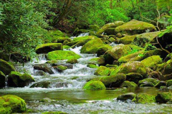 نهر في جورجيا