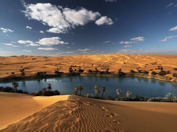 واحات في الصحراء