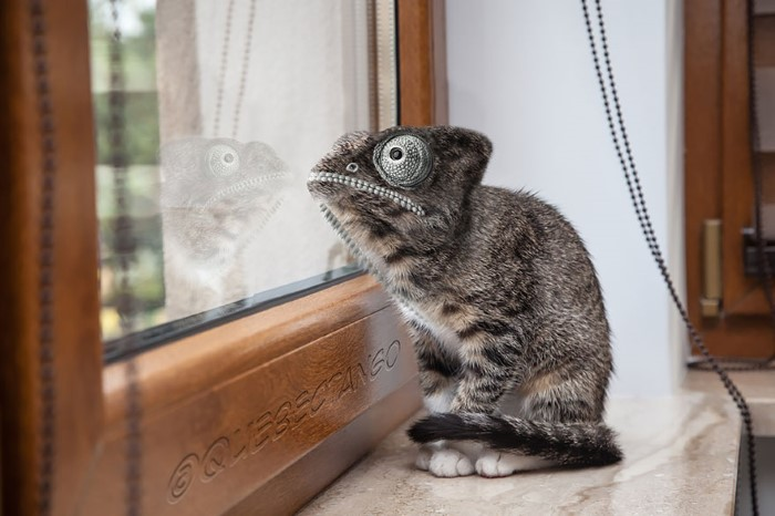 حيوانات مهجنة فوتوشوب