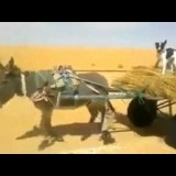 عربة يجرها حمار