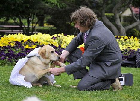 people married animals