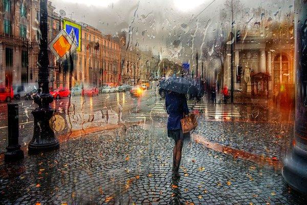 صور أثناء المطر