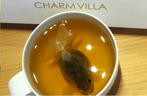 كيس شاي