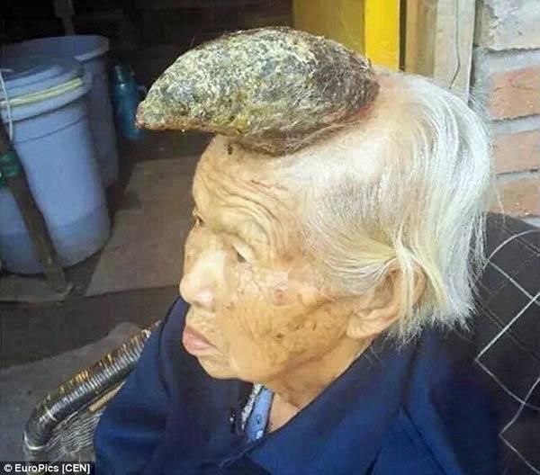 مسنة صينية برأسها قرن