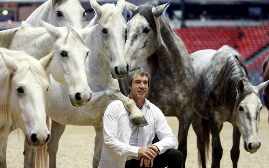 هامس الخيول
